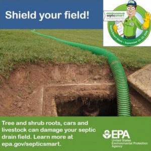 protect drain field