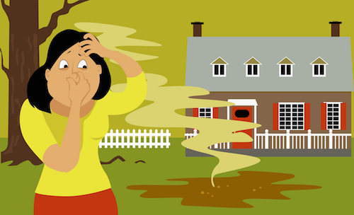7 Signs and Symptoms of Septic Tank System Problems