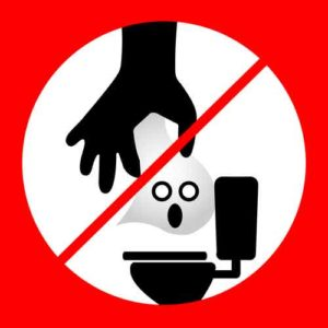 No Flushing Flushable Wipes