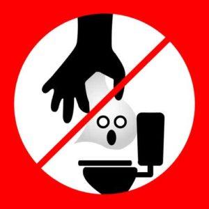No Flushing Flushable Wipes