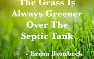 Grass is Alwasy Greener Over Septic Tank
