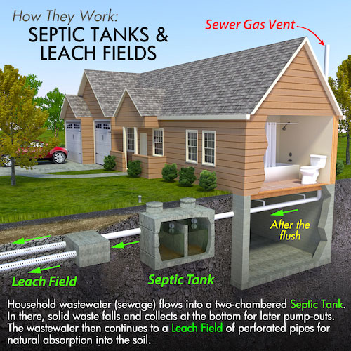 hurting your septic system