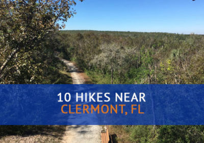 10 Hikes Near Clermont, FL