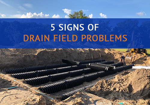 Signs of Drain Field Problems