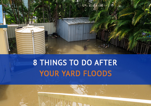 8 Things to Do After Your Yard Floods