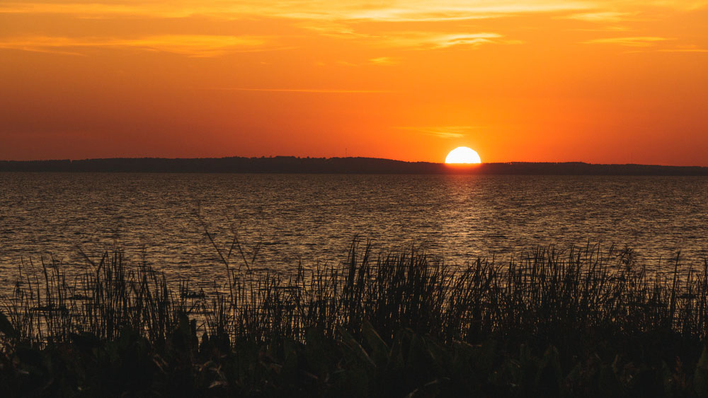 Lake in Florida, Lake County Septic Services