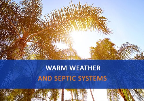 "Sun shining through palm trees with word ""Warm Weather and Septic Systems"""